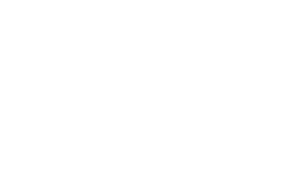 Pub Crawl Vienna
